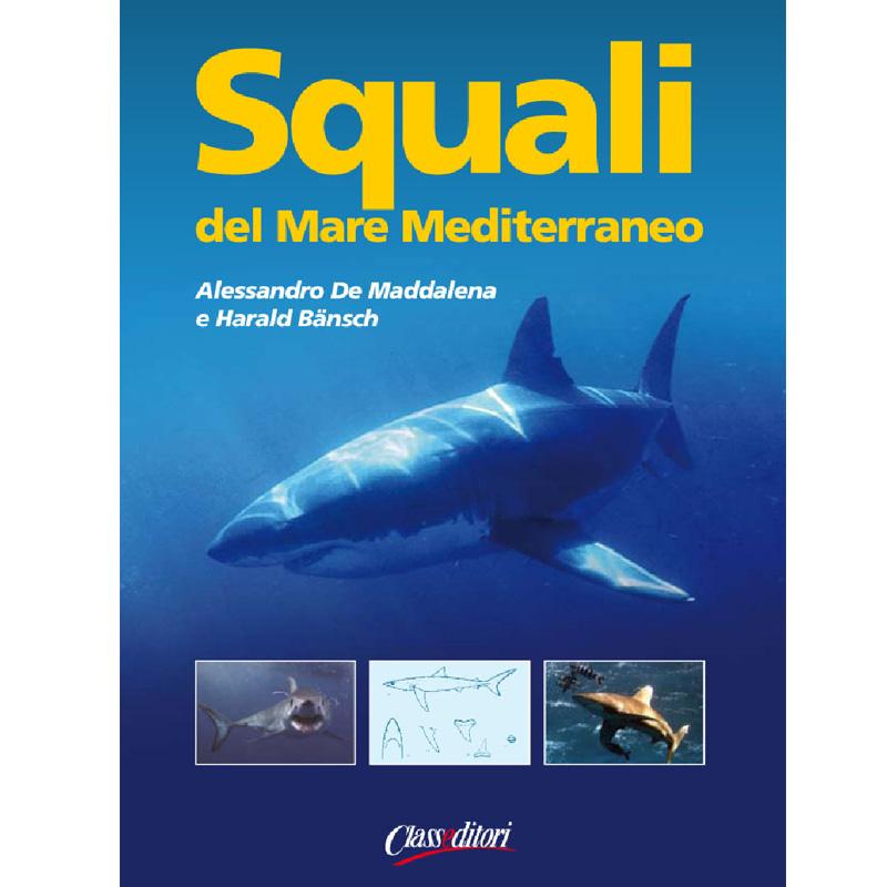Squali del Mar Mediterraneo