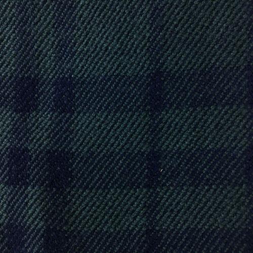 Sciarpa Verde con righe Blu